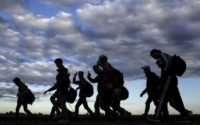 migrants-800x500